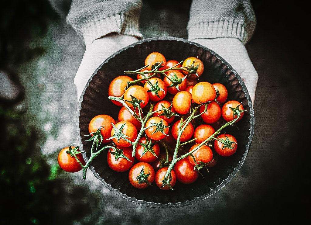 Penne mit Tomatensoße